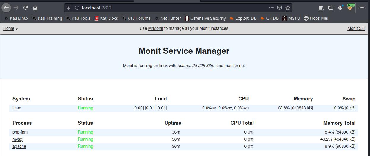 monit web interface